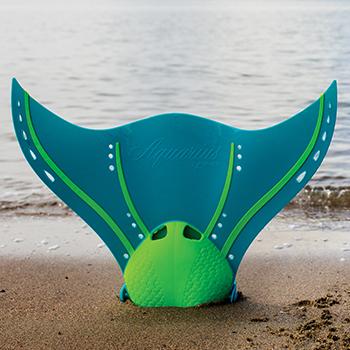 Monopalmes Aquarius Finis plage